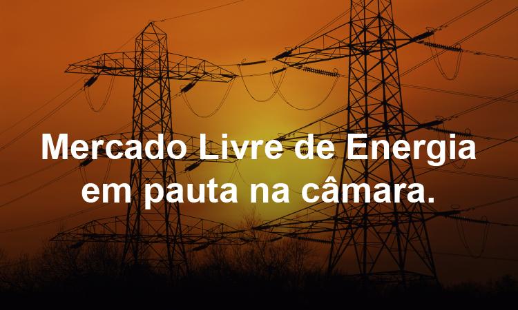 Deputados discutem a portabilidade da conta de energia