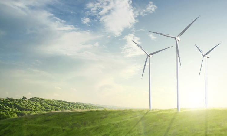 Mercado de energia fecha 2016 74,32% maior